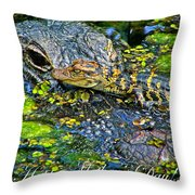 Alligator Mother's Day Throw Pillow