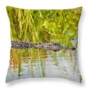 Alligator Reflection Throw Pillow by Al Powell Photography USA