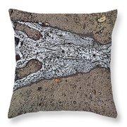 Alligator Skull Fossil 1 Throw Pillow
