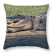 Alligator Sunning Throw Pillow