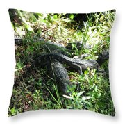 Alligatorbabys Waiting For Mommy Throw Pillow
