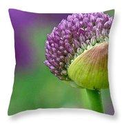 Allium Blooming Throw Pillow