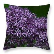 Allium Duet Throw Pillow
