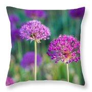 Allium Flowers - Featured 3 Throw Pillow