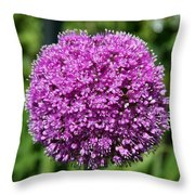 Allium Globe Throw Pillow
