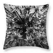 Allium Jewels Throw Pillow