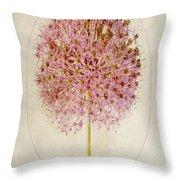 Allium Pink Jewel Throw Pillow