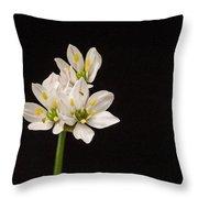 Allium Species 1 Throw Pillow