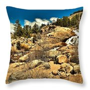Alluvaial Fan Throw Pillow