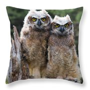 Ally And Olly Throw Pillow