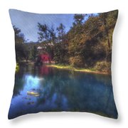 Ally Springs Mill  The Fall Throw Pillow