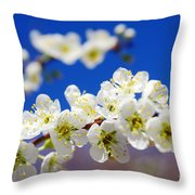 Almond Blossom Throw Pillow by Carlos Caetano