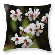 Almond Blossoms Throw Pillow
