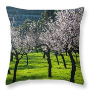 Almond Trees In Bloom Throw Pillow