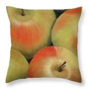 Almost Apple Pie Throw Pillow
