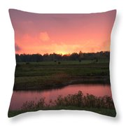 Almost Down Throw Pillow