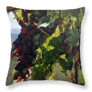 Almost Harvest Throw Pillow