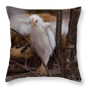 Almost One Month Old Throw Pillow