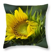 Almost Open Throw Pillow