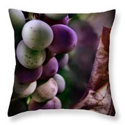 Almost Ripe Grapes Throw Pillow