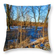 Almost Spring 2015 Throw Pillow
