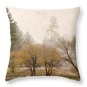 Almost Winter Throw Pillow