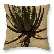 Aloe Ferox Throw Pillow
