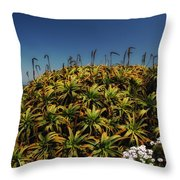 Aloe Is Anyone There Throw Pillow