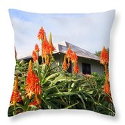 Aloe Vera And Tin Roof Plantation House Throw Pillow