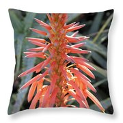Aloe Vera Flower Throw Pillow