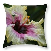 Aloha Aloalo Tropical Hibiscus Haiku Maui Hawaii Throw Pillow