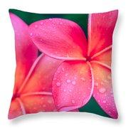 Aloha Hawaii Kalama O Nei Pink Tropical Plumeria Throw Pillow