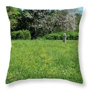 Alone In A Field Of Buttercups Throw Pillow