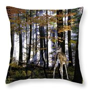 Alone In The Mist Throw Pillow
