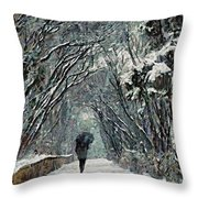 Alone In The  Winter Throw Pillow