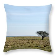 Alone Tree At A Coastal Grassland Throw Pillow