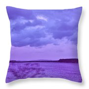 Along My Travels Throw Pillow