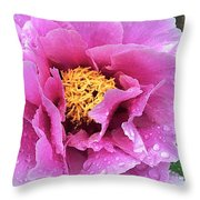 Along Orchard Throw Pillow
