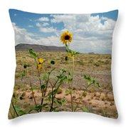Along Route 66 In Arizona Throw Pillow