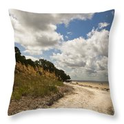 Along The Beach Throw Pillow