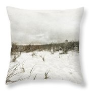 Along The Cape Cod National Seashore Throw Pillow by Michelle Wiarda