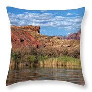 Along The Colorado River Throw Pillow