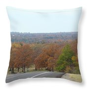 Along The Country Highway 1 Throw Pillow