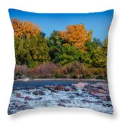 Along The Creek Throw Pillow