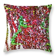 Along The Freeway Wall Throw Pillow