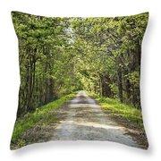 Along The Katy Trail Throw Pillow