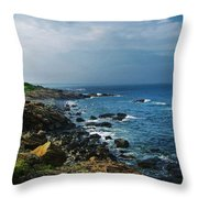 Along The Marginal Way Throw Pillow