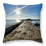 Along The North Wall Throw Pillow