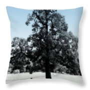 Along The Path Throw Pillow
