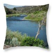 Along The Rio Grande River Throw Pillow